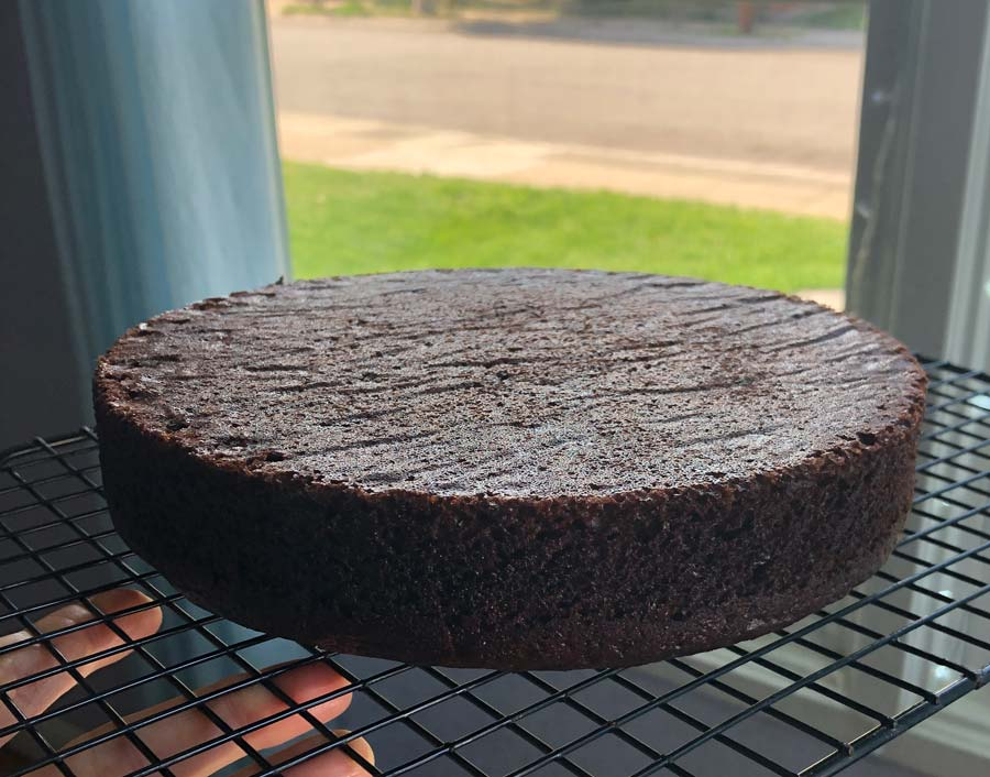 one layer of baked vegan chocolate cake